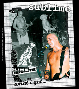 Sublime What I Got Sticker