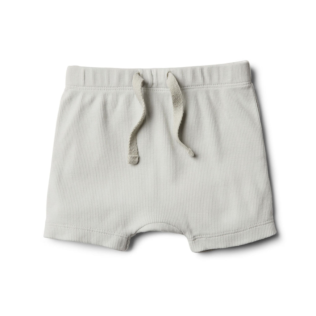 Wilson And Frenchy Shorts | Glacier Grey
