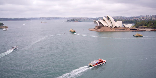 6-cheap-things-to-do-in-Sydney-travel-tips-view-from-sydney-harbour-bridge