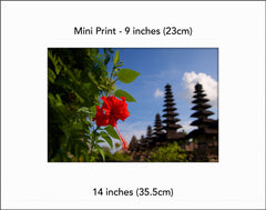 Temple's Flower- Mini Print
