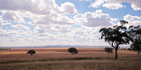 Big Sky - Upper Hunter NSW Australia Landscape Print