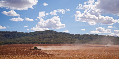 Headers in the Dust - Upper Hunter NSW Australia Landscape Print