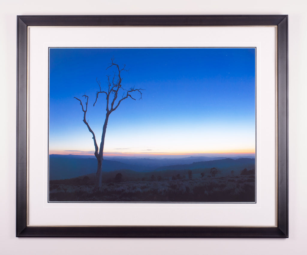 Lone Tree - Limited Edition Fine Art Print