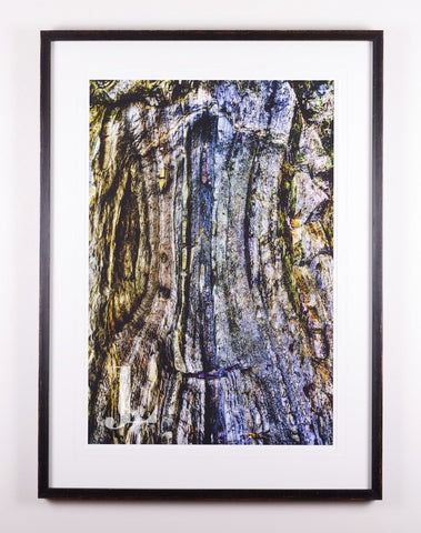 Lines in the Stone - Limited Edition Fine Art Print