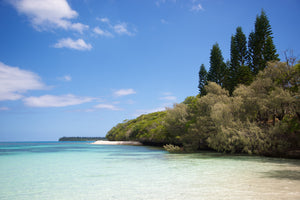 Isle of Delight - Isle of Pines New Caledonia Landscape Print