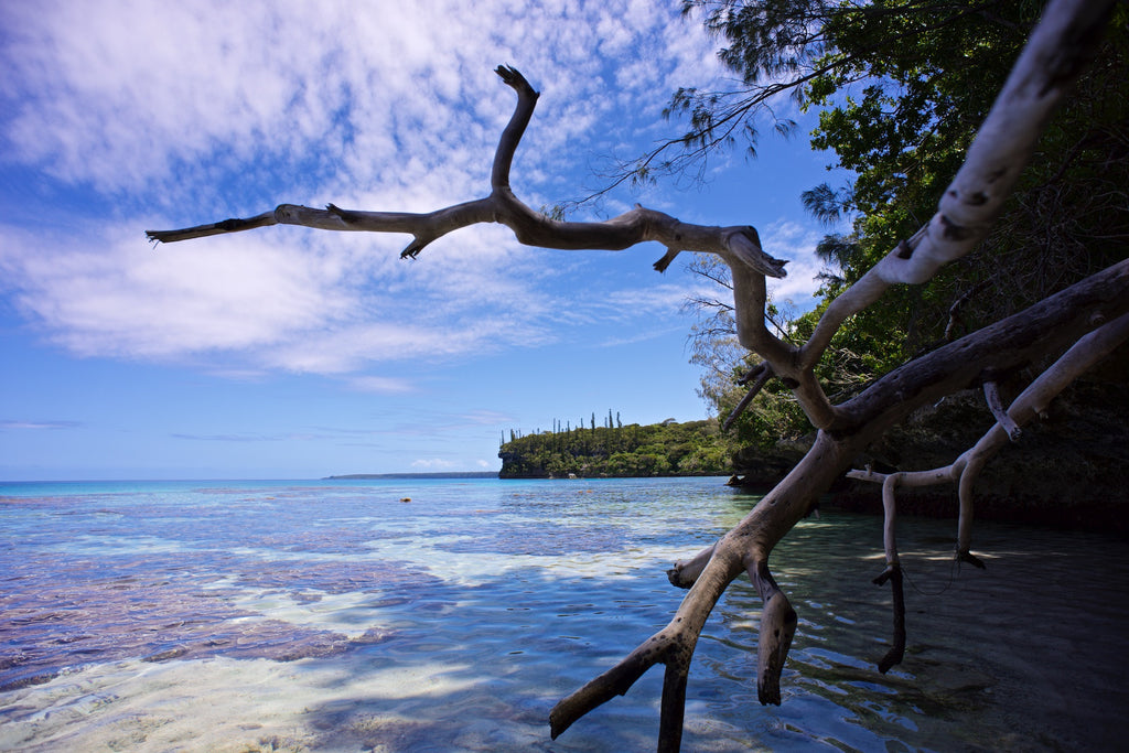 Secluded Escape - Lifou Loyalty Islands New Caledonia Landscape Print