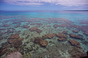 Jaded Waters - Lifou Loyalty Islands New Caledonia Landscape Print