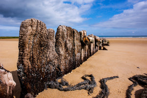 Mulberry Remains - Omaha Beach Normandy Sainte Honorine des Pertes, Saint Laurent sur Mer France Landscape Print