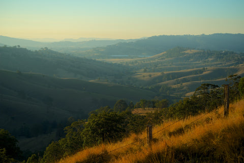Valley View - Hunter Valley Australia Landscape Print