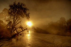 Melville Morning Mist - Maitland Hunter Valley NSW Australia Landscape Print Limited Edition