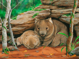Someone to watch over me | Mother and baby common wombats - Natalie Jane Parker