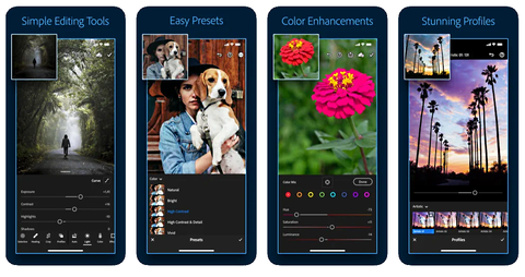 Light Room app for apple and Android