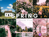 Seasons - Spring - 10 x Lightroom Presets - Desktop and Mobile