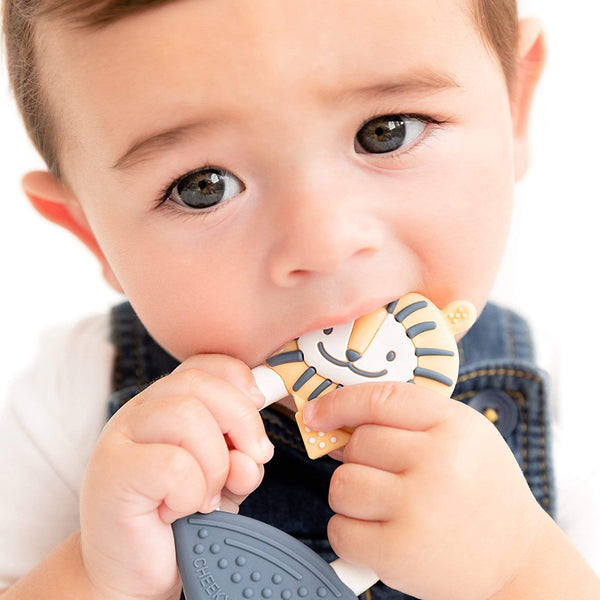 Cheeky Chompers Teether Lion (2)