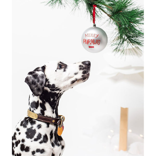 Pearhead Pet Merry Pupmas Ball Ornament - Silver (4)