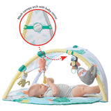 Skip Hop Tropical Paradise Activity Gym & Soother (3)