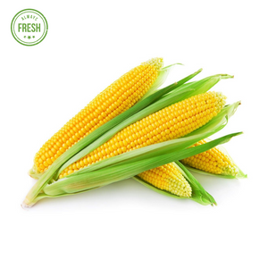 Fresh Sweet Corn (Matamis na Mais)