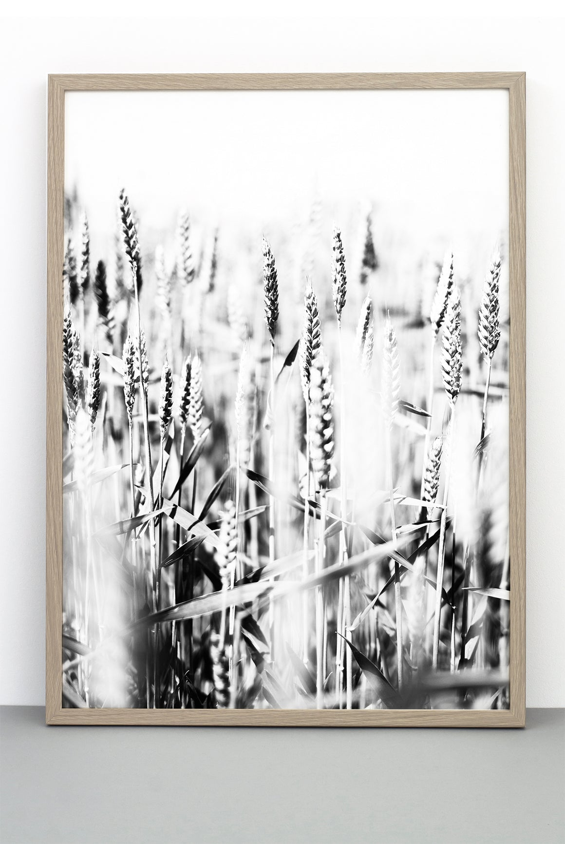 WHOLESALE WHEAT PRINT, PHOTOGRAPHIC POSTER FIELD OF WHEAT