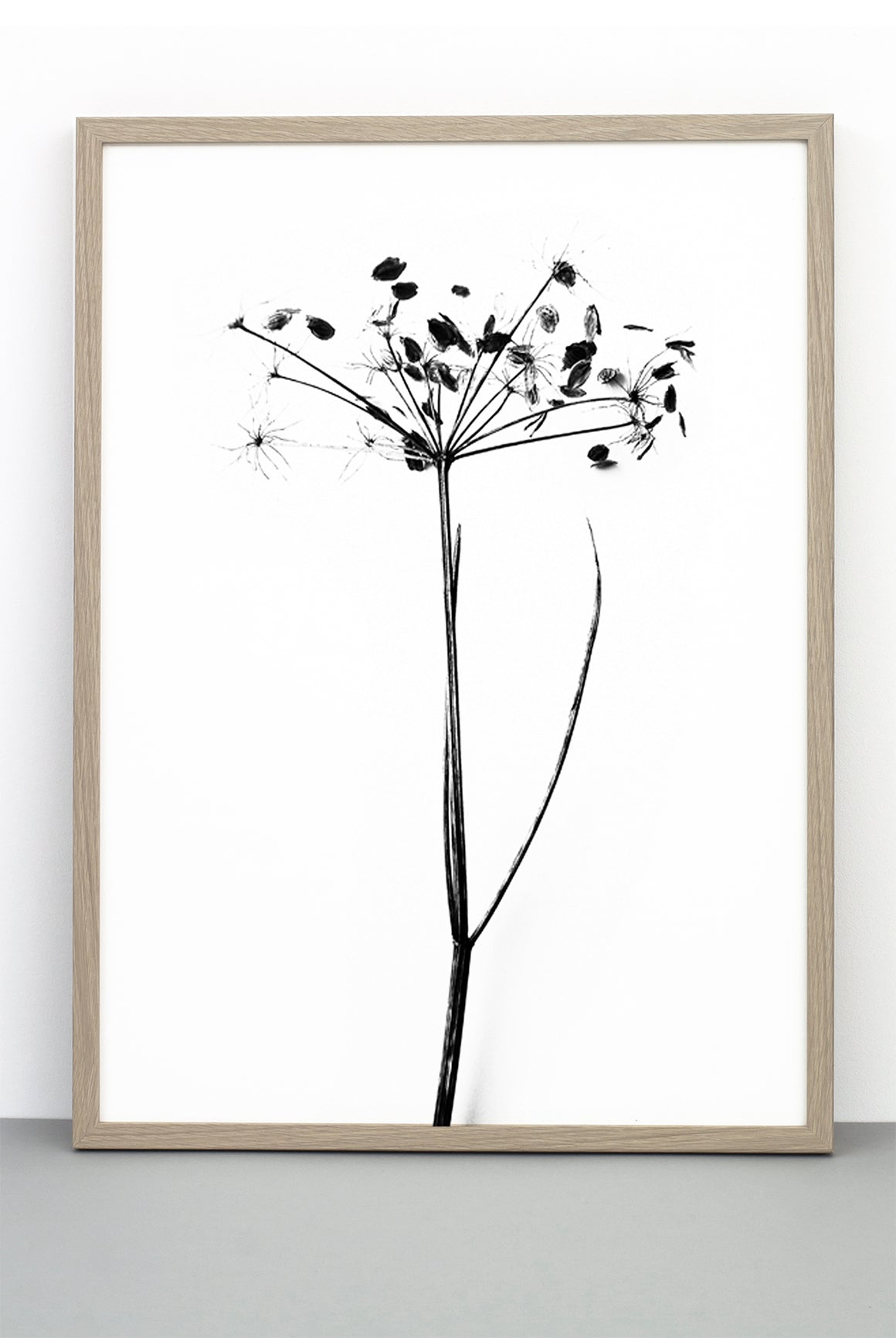 WHOLESALE I DO I DO I DO PRINT,  A BOTANICAL PHOTOGRAPHIC BLACK AND WHITE POSTER