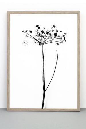 I DO I DO I DO PRINT,  A BOTANICAL PHOTOGRAPHIC BLACK AND WHITE POSTER