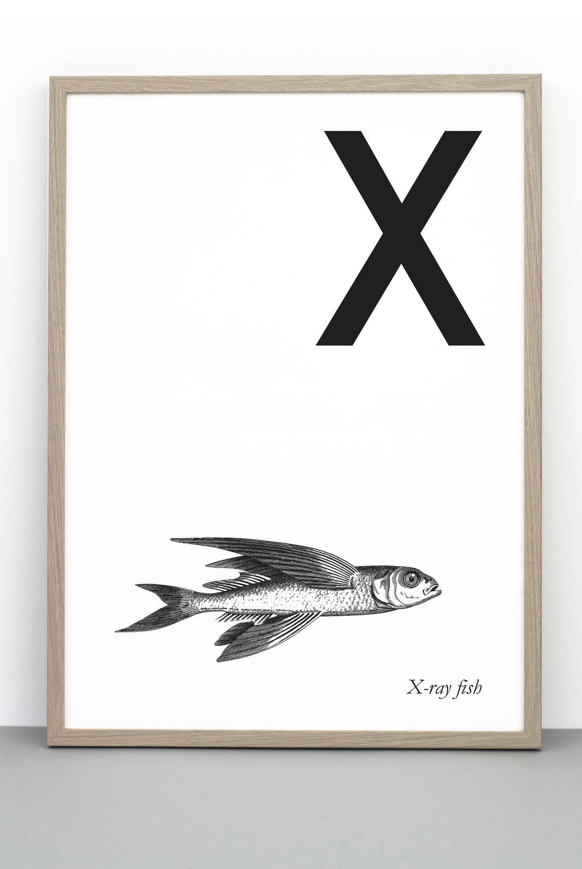ANIMAL LETTER X, X-RAY FISH, X DOWNLOADABLE PRINT