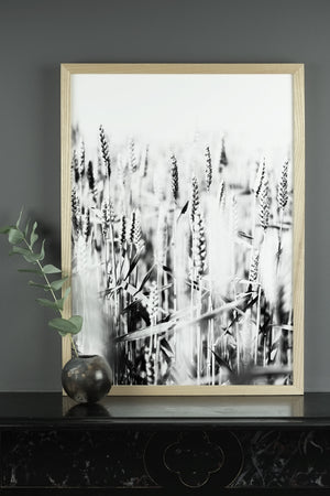 WHEAT PRINT, PHOTOGRAPHIC POSTER FIELD OF WHEAT