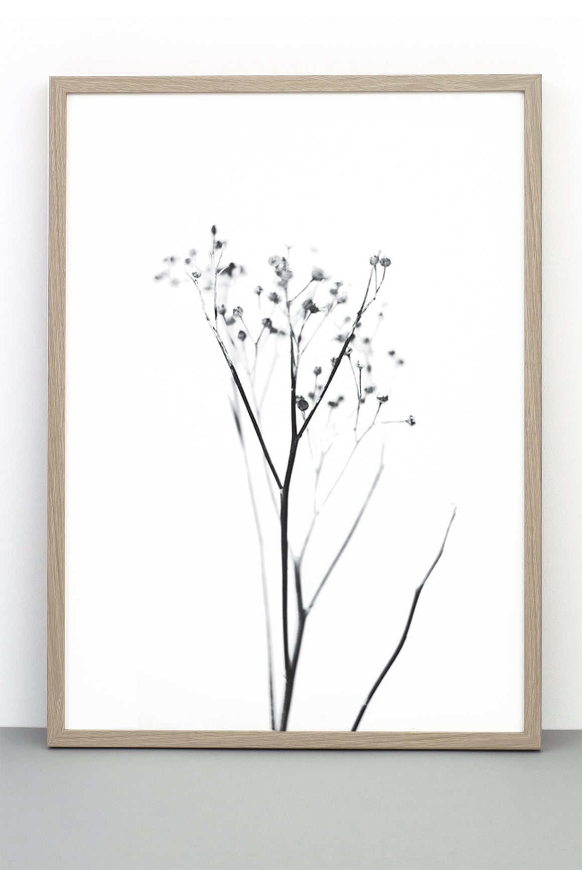 YARROW PRINT,  A BOTANICAL PHOTOGRAPHIC BLACK AND WHITE POSTER