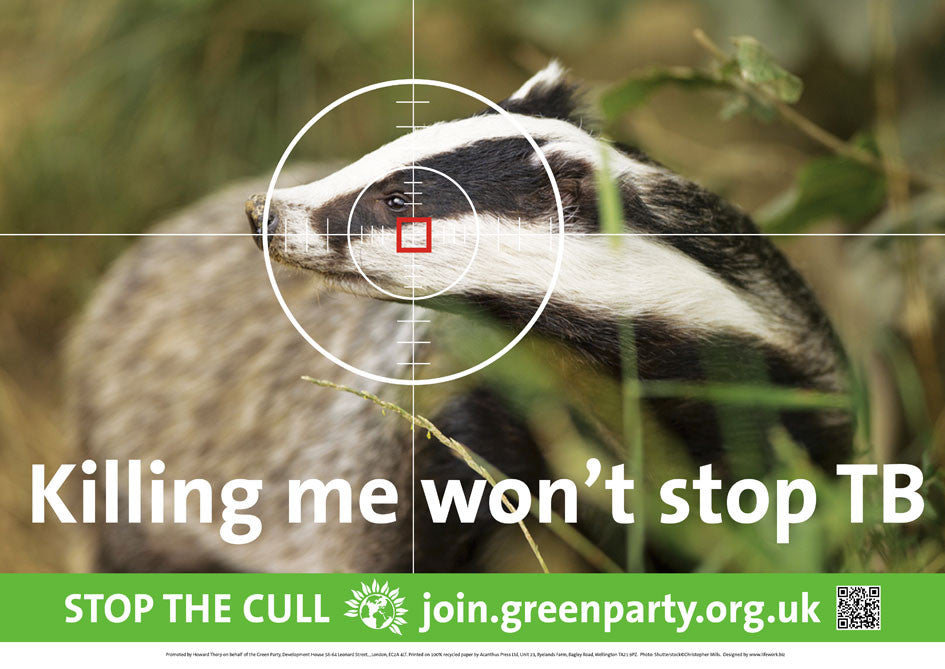 "10 A3 ""STOP THE BADGER CULL"" posters"
