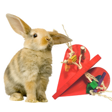 Load image into Gallery viewer, Fun Size Bunny Love Heart Toy