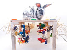 Load image into Gallery viewer, Activity Zone Rabbit Toys - XL