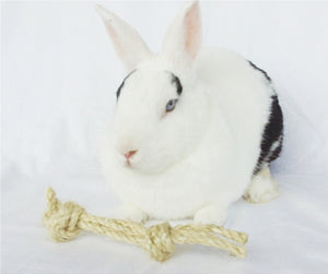 Sisal Rope Bone Rabbit Toy - Natural