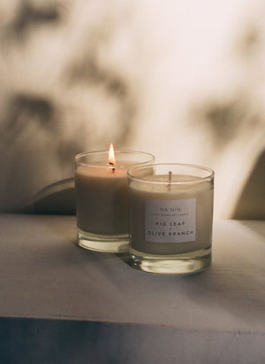 Fig Leaf & Olive Branch Candle / Available in Multiple Sizes