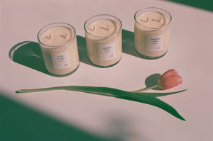 Na Nin Garden Collection 9oz Candles - Available in Multiple Scents