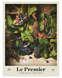Domaine Milan Pinot Noir 2014 - Posters