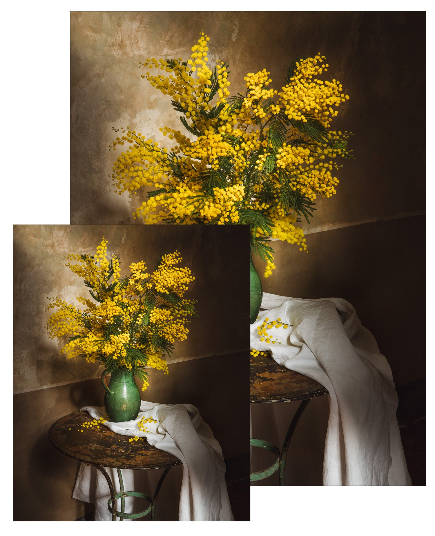 Still Life with Winter Mimosa Small Poster