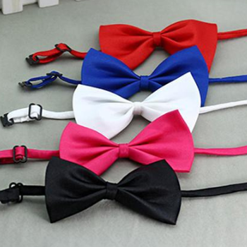 Adjustable Pet Bowtie Collar for Dog and Cat