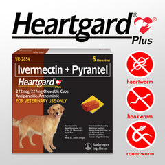 HEARTGARD PLUS for Dogs 23 to 43KG (1 piece)