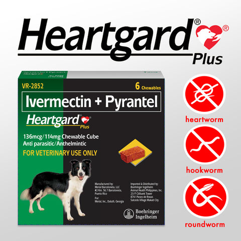 HEARTGARD PLUS for Dogs 12 to 22KG (1 piece)