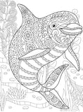 Dolphins, PDF Coloring Book -Relaxing Patterns With Playful Dolphins