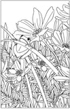 Frogs - Delightful & Decorative Frogs & Toads, PDF Coloring Book