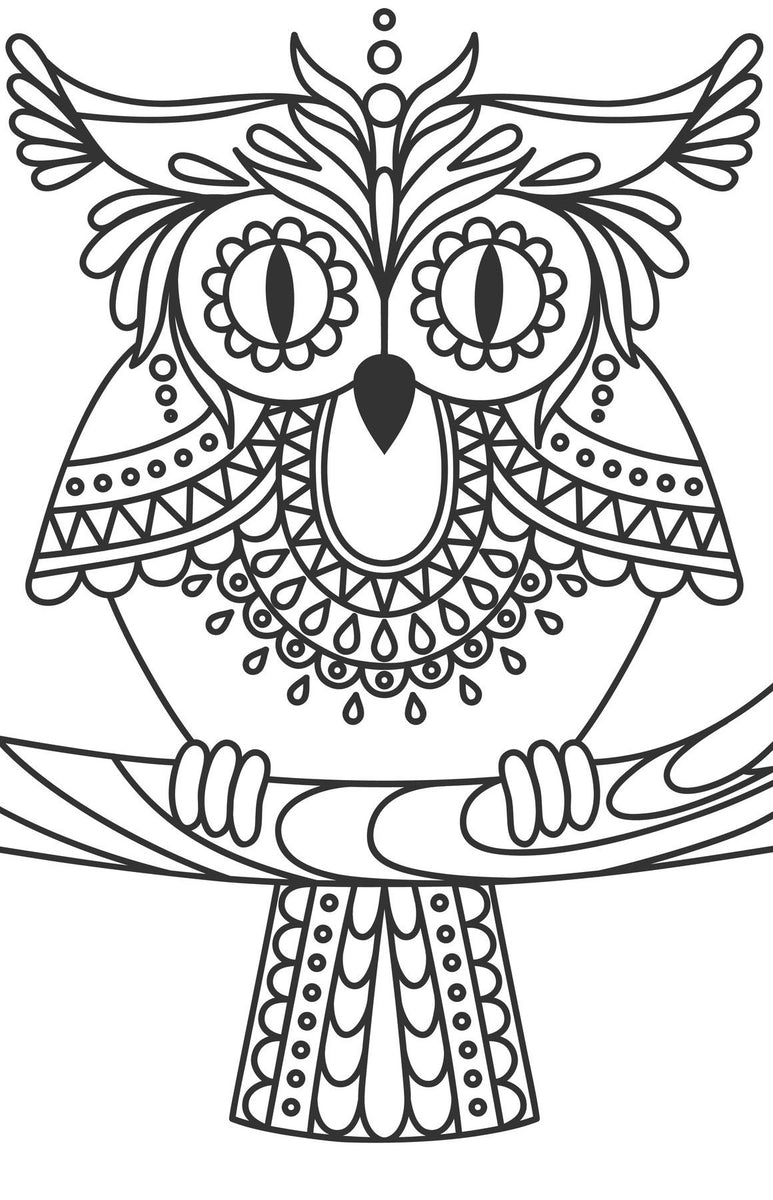 Large Print OWLS PDF Coloring Book For Beginners, Seniors ...