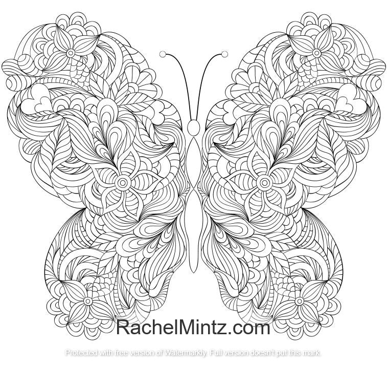 Rainbow Wings - Butterflies and Flowers Coloring (PDF Book ...