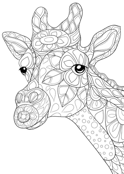 Wild Africa African Safari Animals Coloring Pdf Book 40 Pages Rachel Mintz Coloring Books