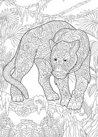 Wild Africa - African Safari Animals Coloring (PDF Book - 40 Pages)