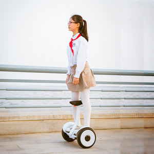 eWheels 54V, 500W, 30 km range, 30 km/t - Two Wheel Electrical Hoverboard & Self Balance Leg Control Scooter