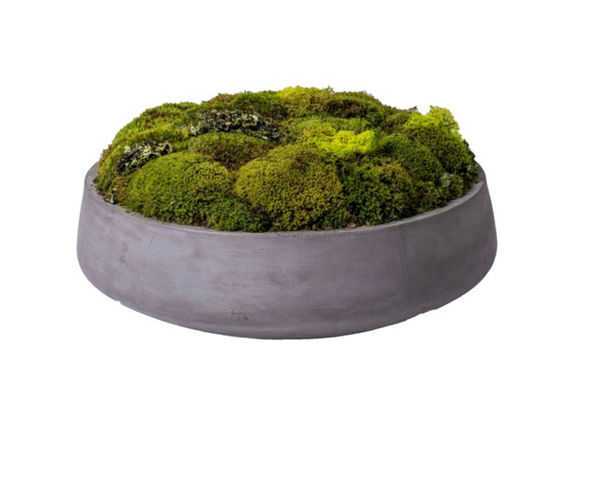 BOWL MOOD MOSS | ACCESSORIES