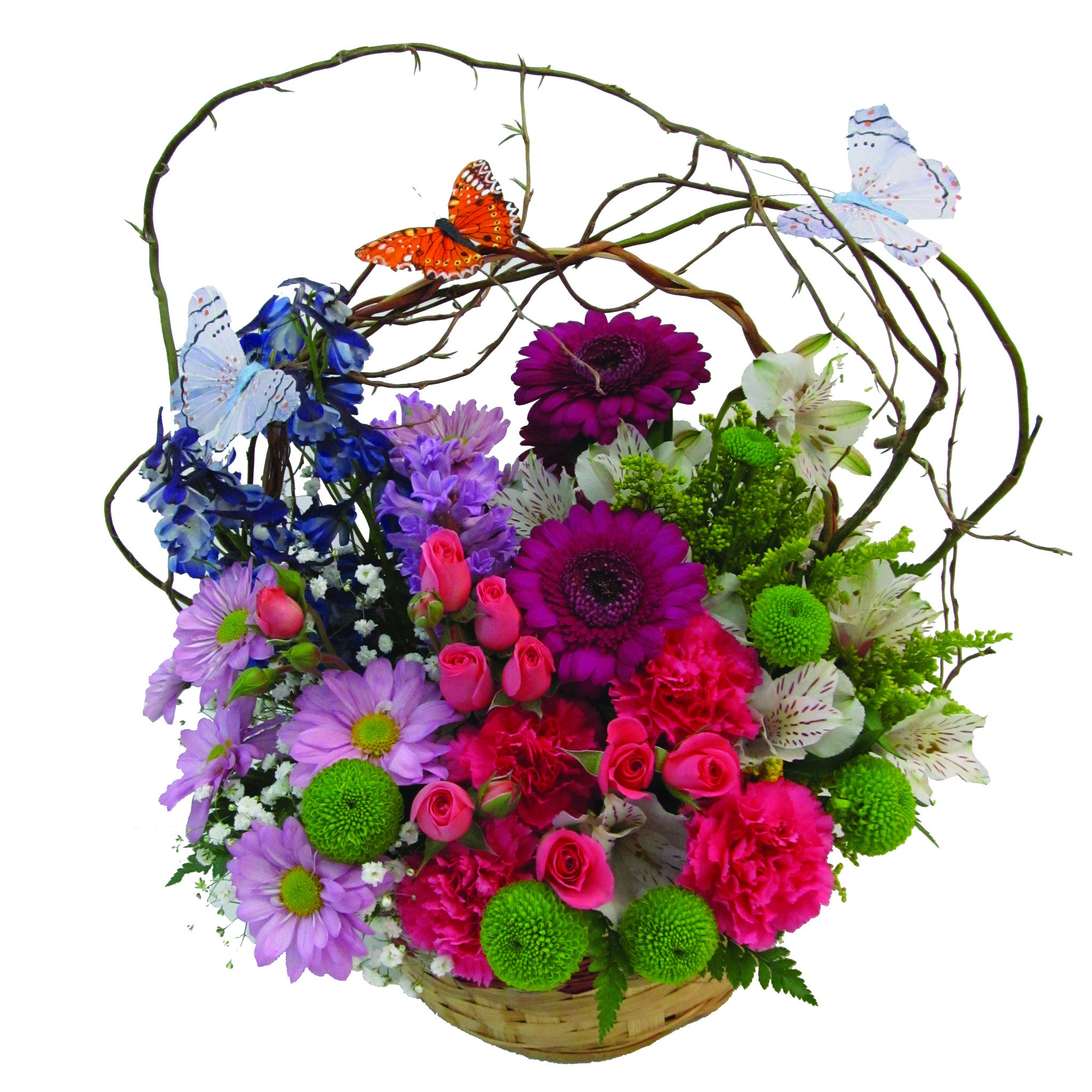 Butterfly Basket Delivered Buffalo Ny Lipinoga Florist
