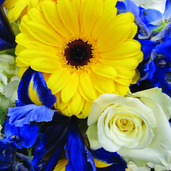 Blue & Yellow Wrapped Flower Assortment