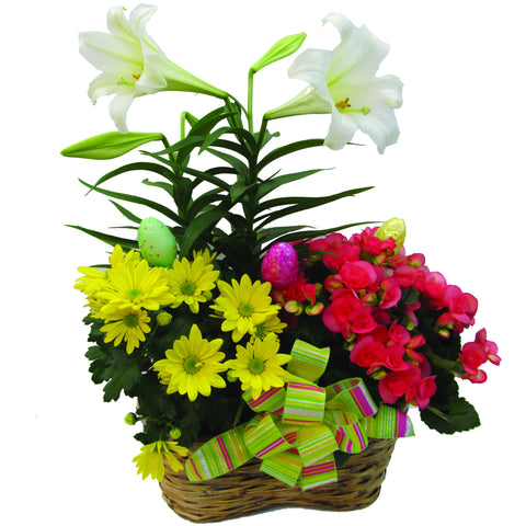 Bright Easter Plant Basket