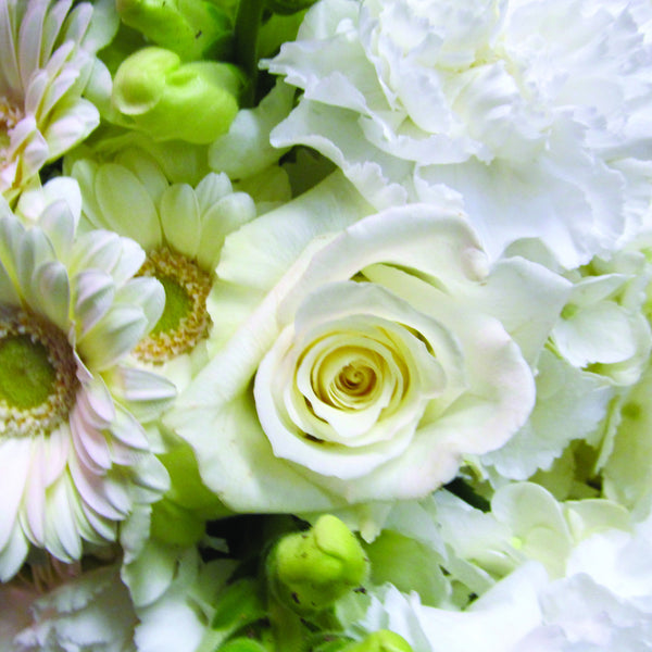 White Wrapped Flower Assortment